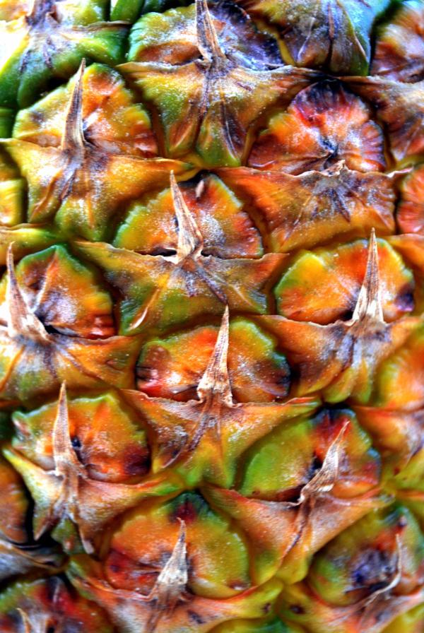 pineapple. by x-kuroneko