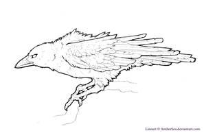 Raven-Crow Free Lineart