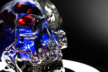 Crystal Head Vodka 1 by maltidama