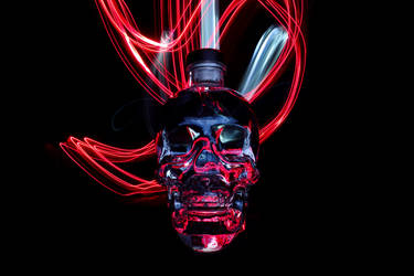 Crystal Head Vodka 2 by maltidama