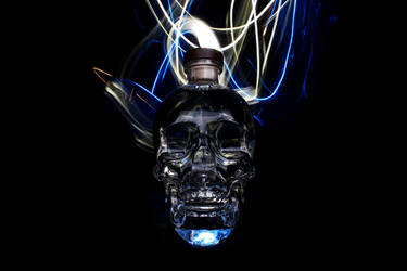 Crystal Head Vodka 3 by maltidama