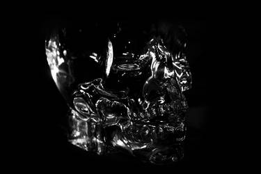 Crystal Head Vodka 4 by maltidama
