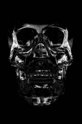 Crystal Head Vodka 6 by maltidama