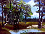 Kevin Hills Quiet Birch Trees Re Reading