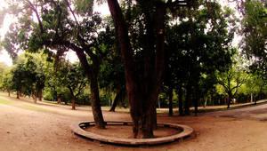 Quinta da Boa Vista 5
