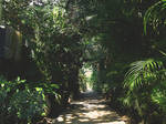 Fantasy Path