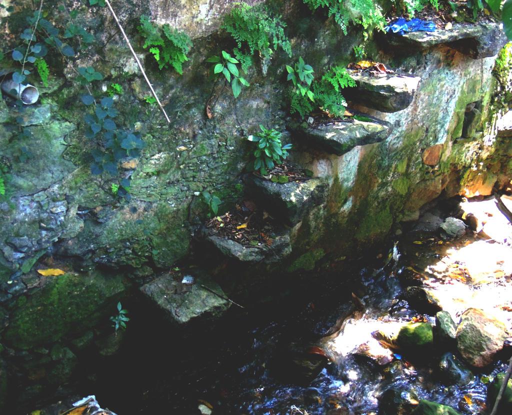 Largo Boticario 5