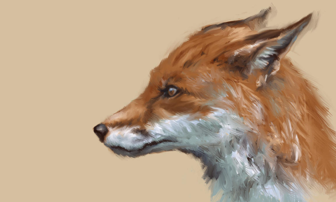 Fox speedpaint by artoftas