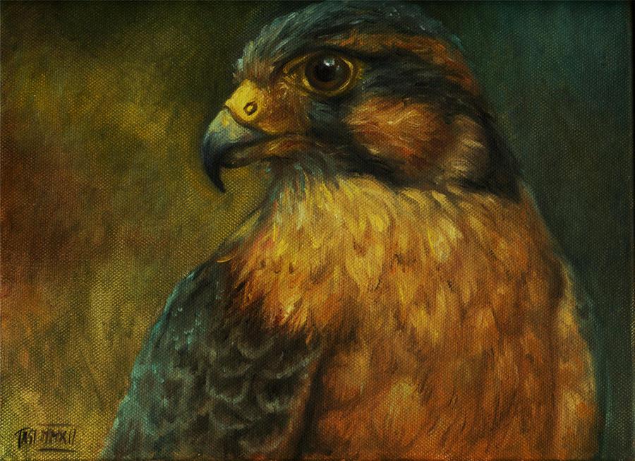 Hawk by artoftas