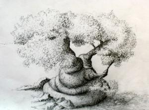 LetanguePei's Profile Picture