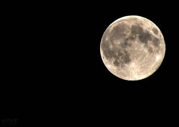 Full Moon by wewe18