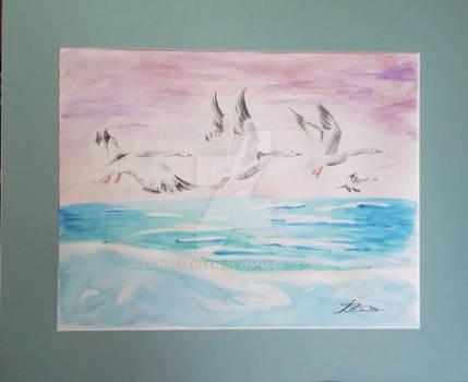 Snow Geese of Rangle Island