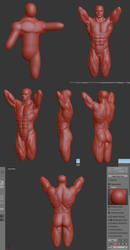 Torso male sculpt by SEINICK