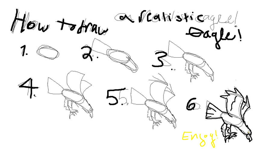 How to draw a realistic eagle: In 6 easy steps by skyott3rXx86xX on ...