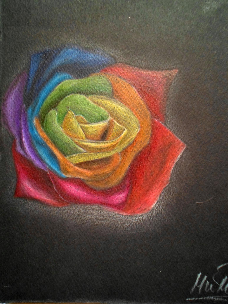Rainbow rose by msMIM