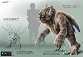Calaid Creature Concept Sheet by franeres