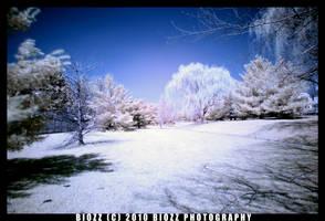 New Infrared 01 by BiOzZ