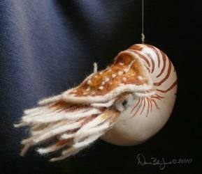 Nautilus by FamiliarOddlings