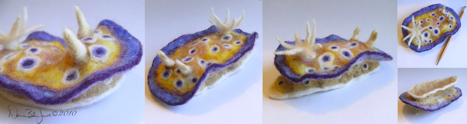 Sea Slug Kuniei by FamiliarOddlings
