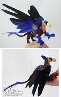Parrot Griffin by FamiliarOddlings