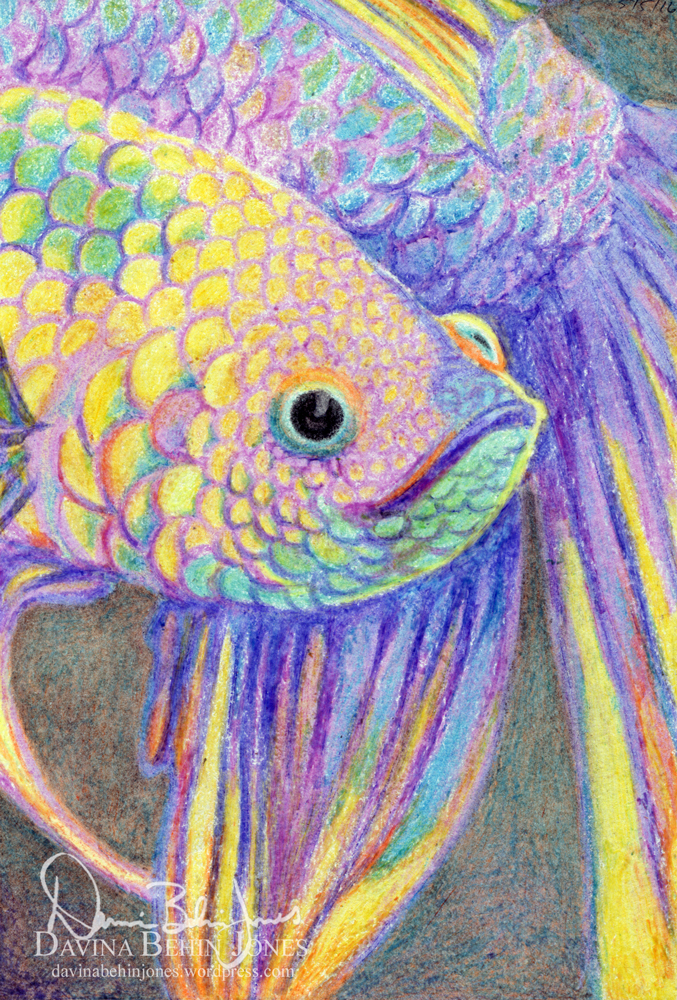 Crayon Purple Betta by FamiliarOddlings