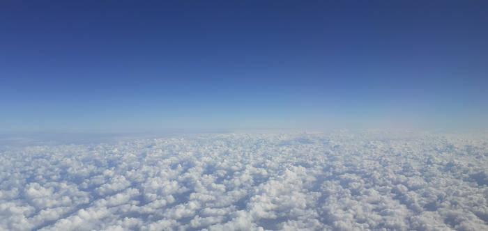 Jackal's Sky