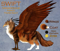 Swift: Ref Sheet