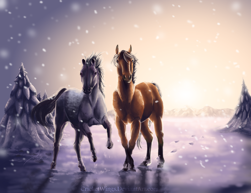 Winter by Crickatoo