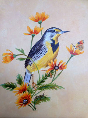 Western Meadowlark oil painting by Ned-The-Hat