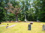 Old Cemetery in SC by EveyD