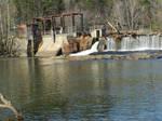 Milburnie Dam Scenic Photo by EKDuncan 2