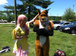 Fluttershy cosplay - Portcon - with fursuit fox