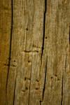 Texture - Dead Oak 1