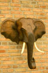 Elephant sculpture 1