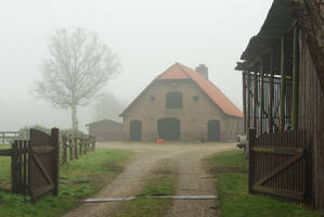 Farm in the mist by steppelandstock