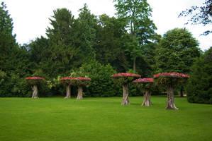 Flowered trees landscape 2 by steppelandstock