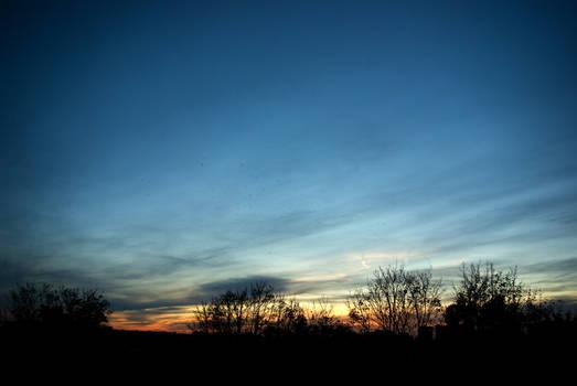 Samhain sunset and distant birds 06