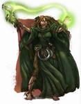 Jade Wizard