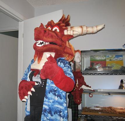 Ignitus Costume