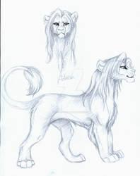 Adrian's design - sketch