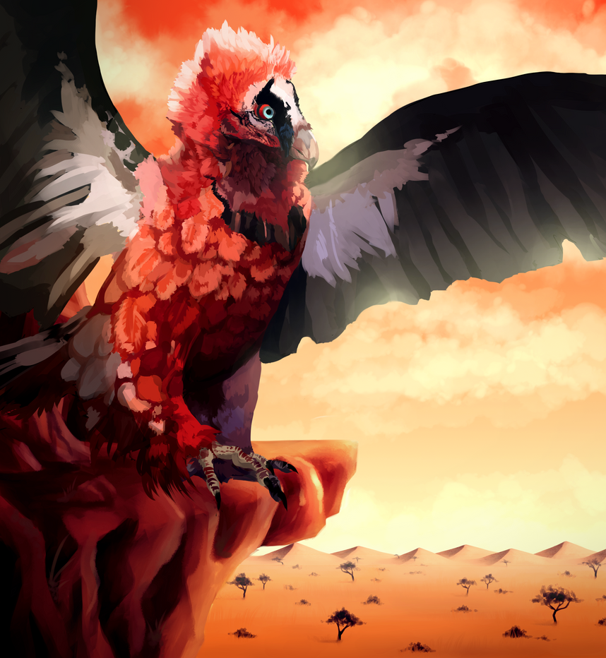 Diana Corvus' Vault Bearded_vulture__collab__by_trollcreak-d7sjjld