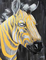 Zebra by ShanaPatry