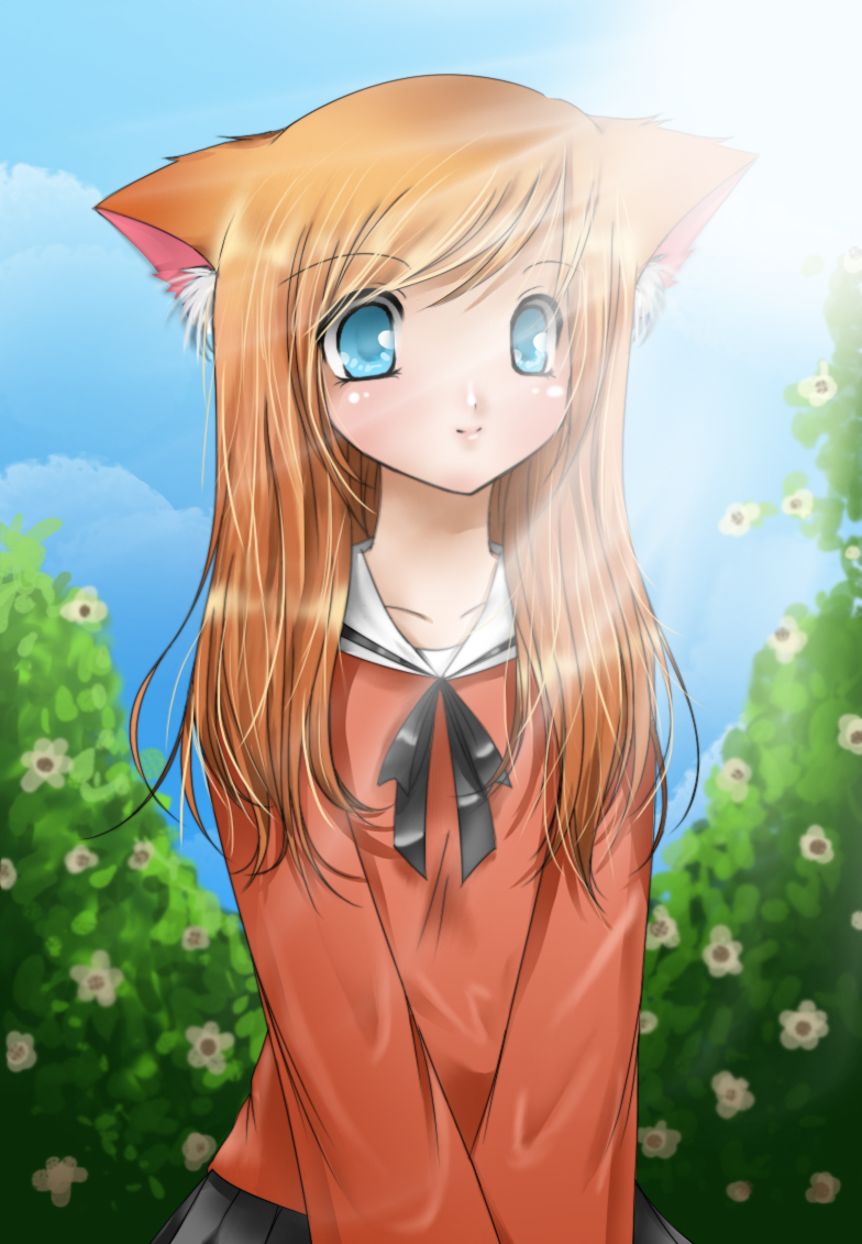 cute cat girl by Clover31 on DeviantArt