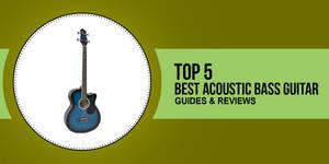 Best Acoustic Bass Guitar Review