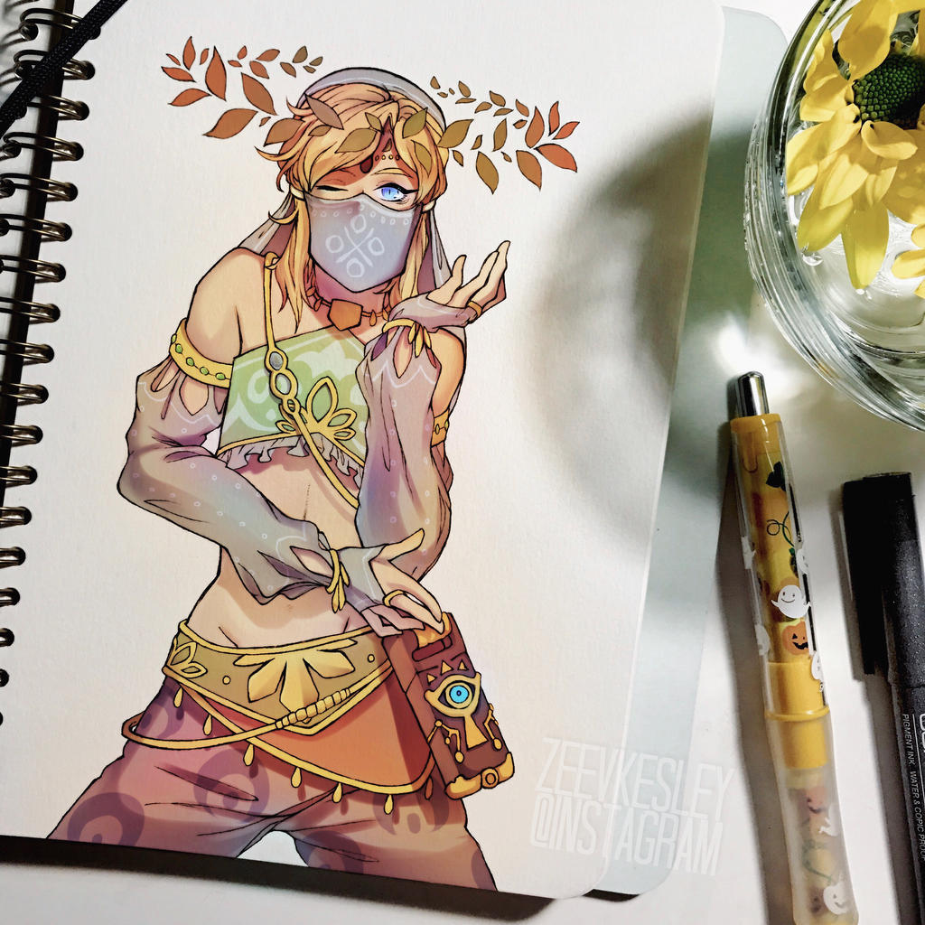 Gerudo Link by cliones on DeviantArt