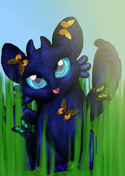 Butterflies by DragonDogFilmsG