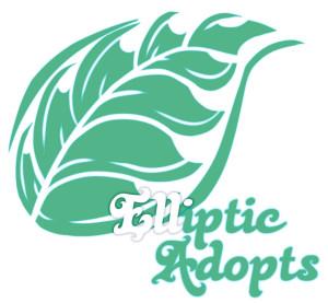 EllipticAdopts's Profile Picture