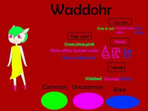 Waddohr referance sheet (Closed Species!)