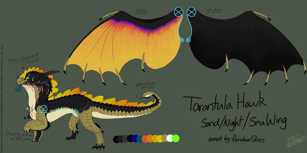 Tarantula Hawk : Finished Ref. Sheet commission  by Milo-On-The-Moon