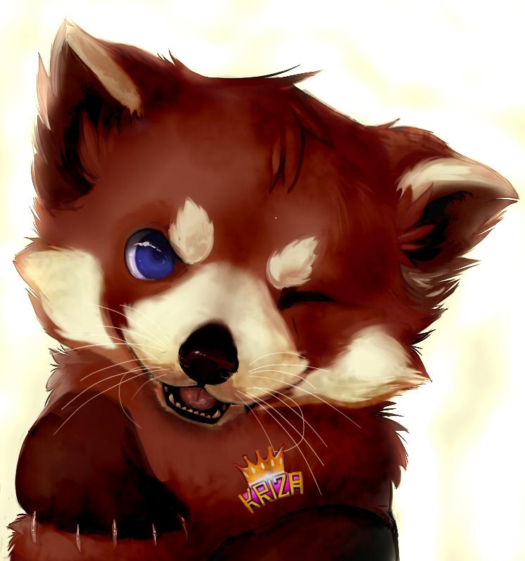 Red panda comission by Kanbhik